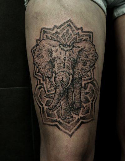 Mandala dotting elephant