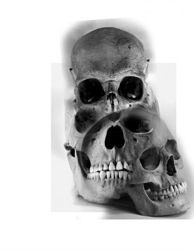 skulls_illusion_flash